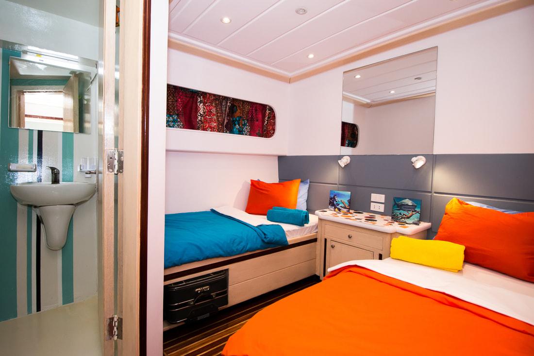dive pro- red-sea-live-aboard-cabins-hammerhead-safari-001_1_orig