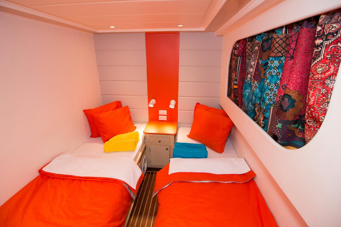 dive pro- red-sea-live-aboard-cabins-hammerhead-safari-002_orig