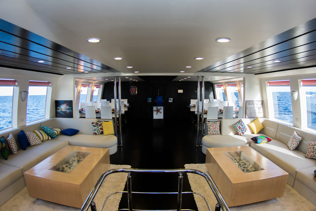 red-sea-live-aboard-la-hammerhead-safari-001_orig- dive pro