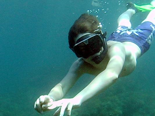 PADI-Skin-Diver- dive pro