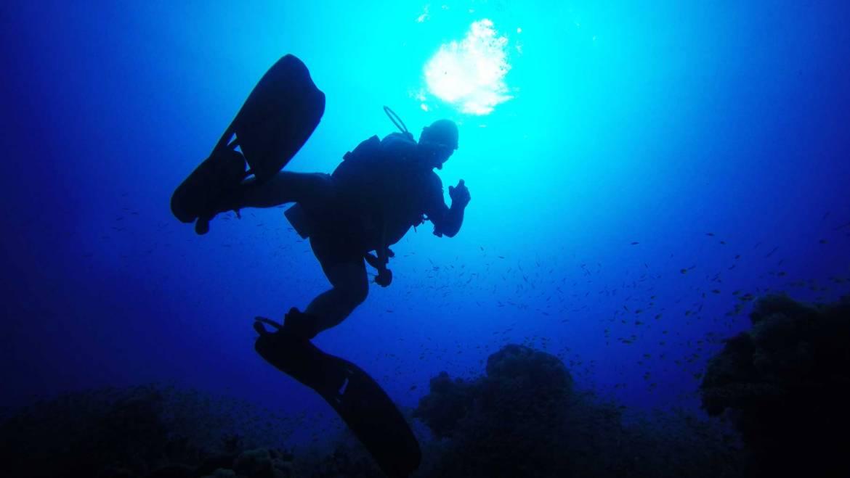dive pro-deep-diver-spec-crs