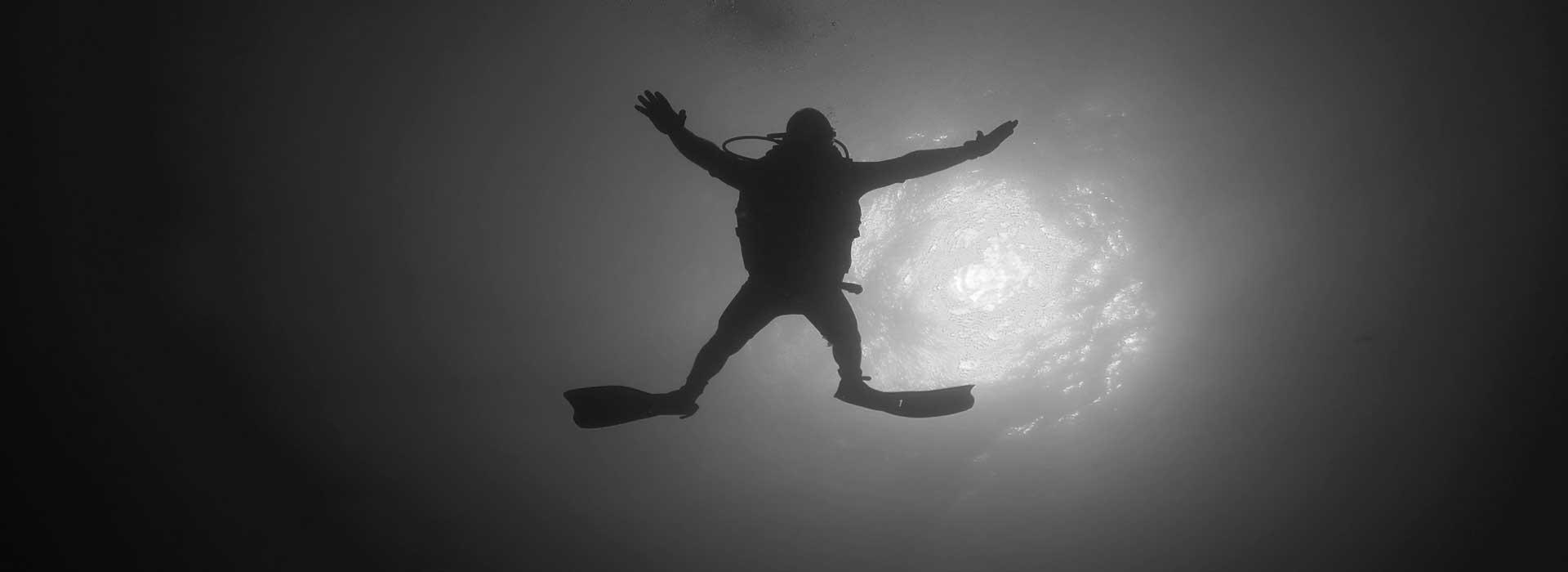 into-the-blue- dive pro