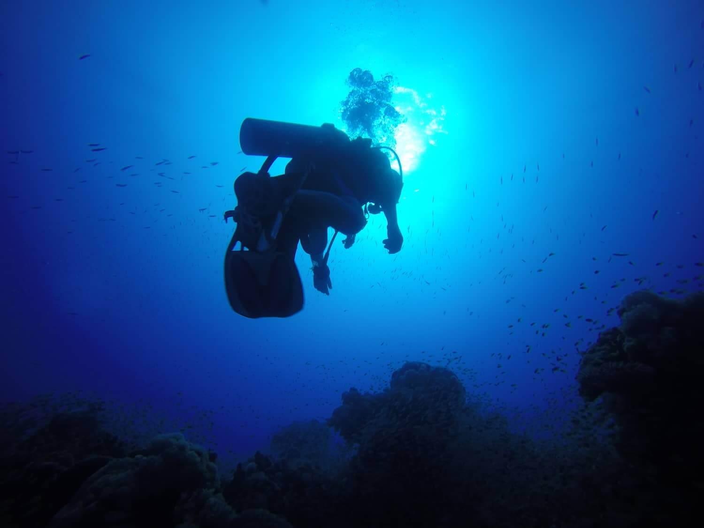 Egypt-REDSEA-Hurghada-DivePro-Academy-Scuba-Diving-Center-Scuba-Diver-5