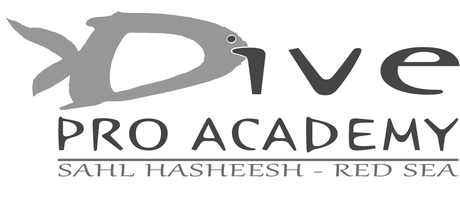 Dive Pro Logo
